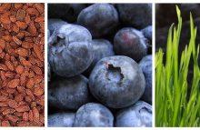 Superfoods: eine Bereicherung in der Küche