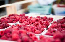 Beeren: altbekanntes und regionales »Superfood«