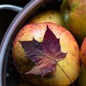 Äpfel: Gesund und lecker